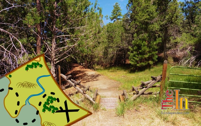 Hiking Southern Utah: Canal Trail in Pine Valley ...