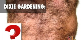 Dixie Gardening!? How to grow back hair!?