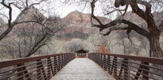 Three Hikers Killed Zion National Park