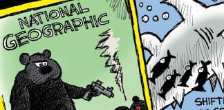 Cartoon Rupert Murdoch Fox Buys National Geographic