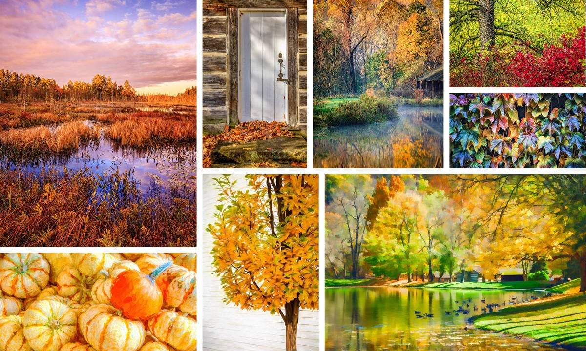 Autumn Throughout North America