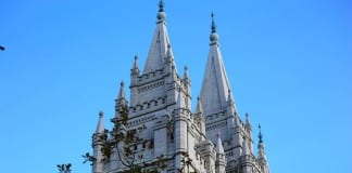 What do you think of the LDS Church's recent LGBT decision?