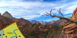 Hiking Southern Utah: Overlook Trail in Zion Canyon