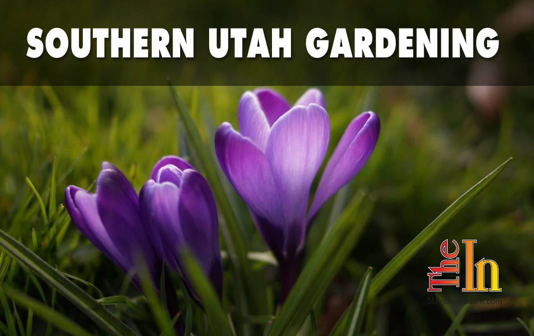 Southern Utah Gardening: The time has come to fertilize your lawn and garden