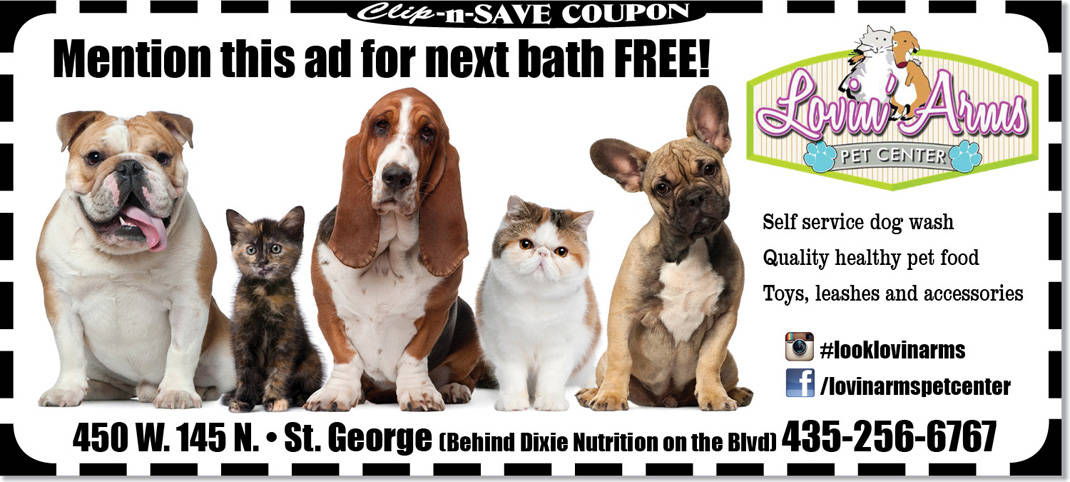 Pet store st george free bath at lovin arms pet center pet store st george solutioingenieria Gallery
