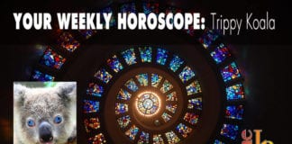 Weekly Horoscope by Trippy Koala