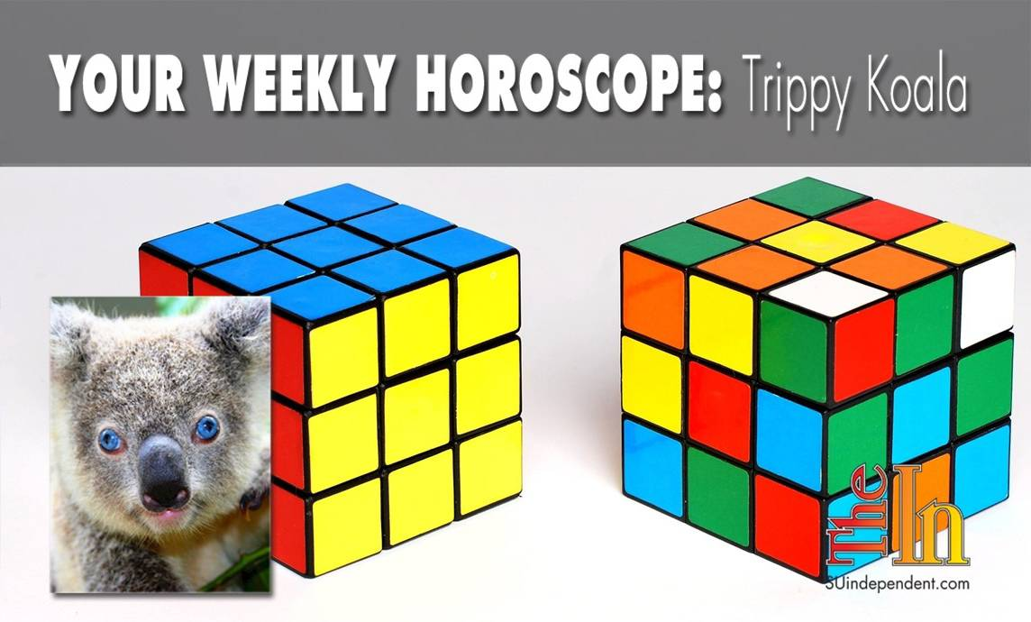 Your Weekly Horoscope Trippy Koala