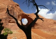 southern utah weekend events ear-of-the-wind-89470_1920