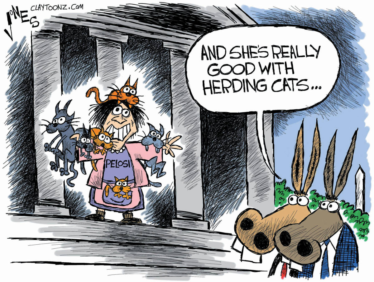 Nancy has Spring in her step and Loose screws in her head