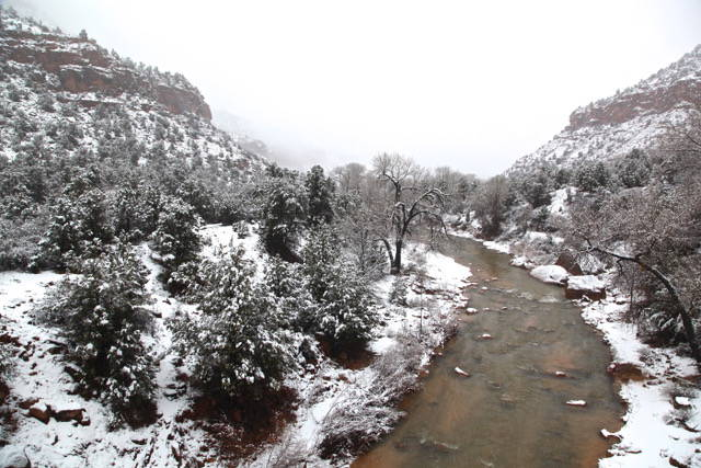 Photo gallery: Zion in winter
