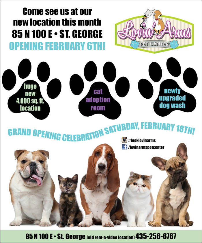 St george pet store grand opening at lovin arms pet center - Grand petshop ...