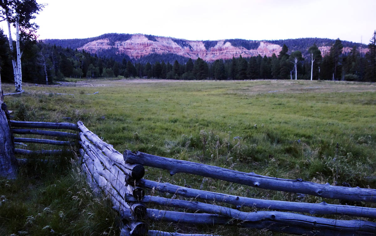 North Fork Ranch conservation easement protects Virgin River, forests