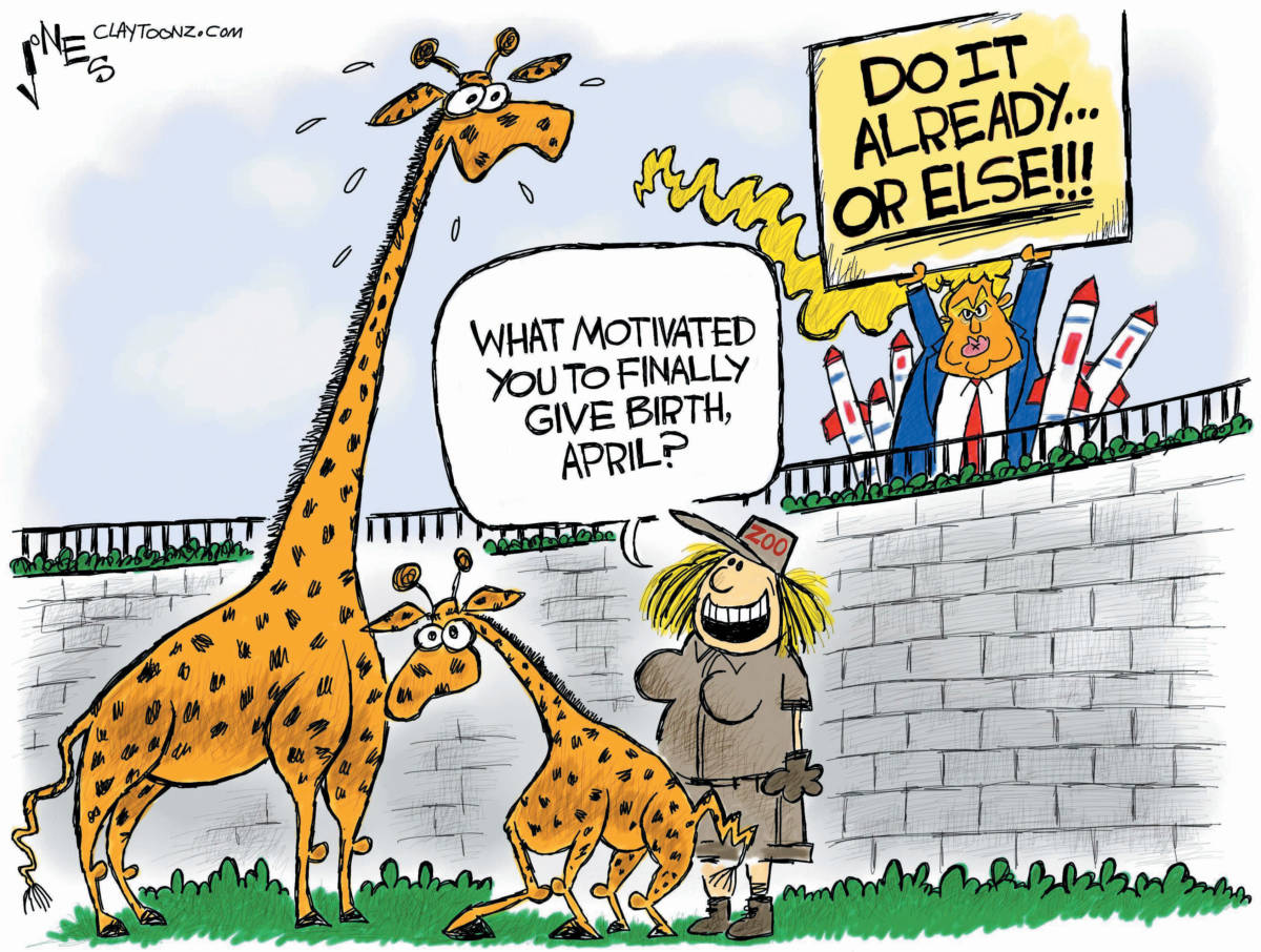 "CARTOON: ""Fun With Giraffes"""
