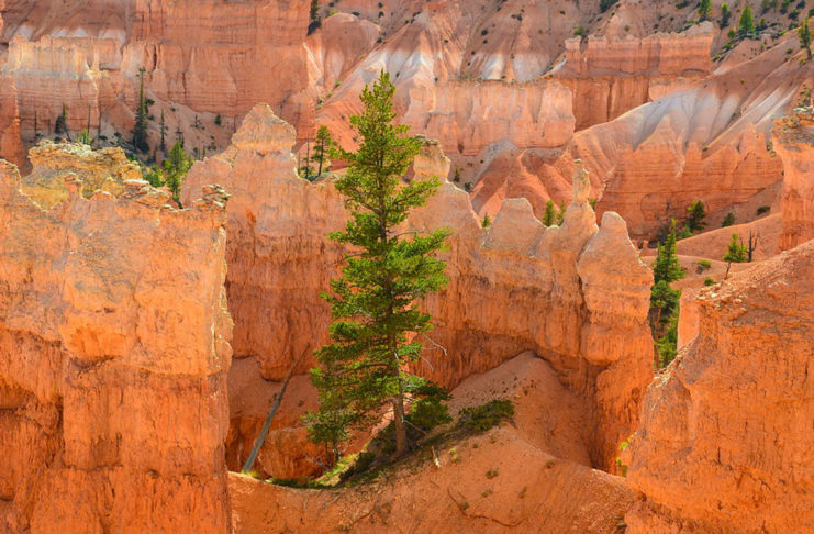 Consider less explored destinations in southwest Utah over Memorial Day weekend