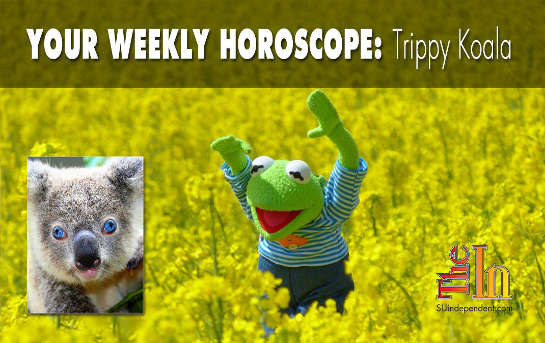 Your Weekly Horoscope Trippy Koala Tryptophan the All-Knowing Koala