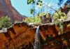 Middle Emerald Pools Trail at Zion National Park reopens in late 2009