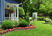 How to keep landscapes looking lovely in the heat