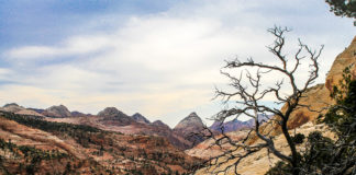 Angels Landing and portion of West Rim Trail close in October