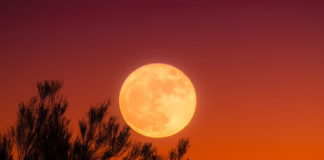 southern utah weekend events harvest-moon-1828012_960_720