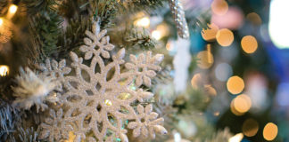 Jubilee of Trees raises funds for precision genomics cancer care