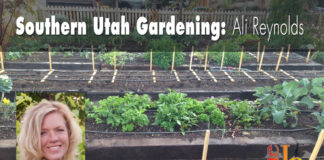 Southern Utah Gardening: Planning an organic vegetable garden