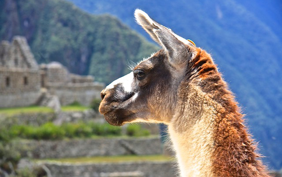 SUU faculty lead expedition to Peru