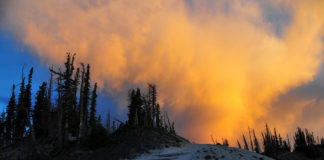 Cedar Breaks National Monument seeks comments on proposed fee increase