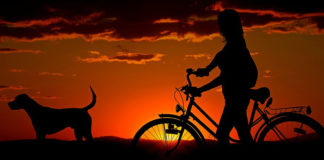 Healthy Dixie Council and Southern Utah Bicycle Alliance offer grants to Bicycle Collective
