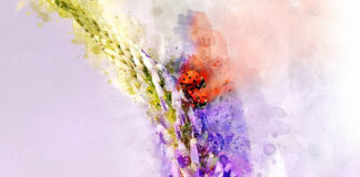 The Dixie Watercolor Society hosts art show, competition