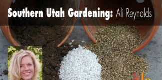 Southern Utah Gardening: Choosing soil amendments