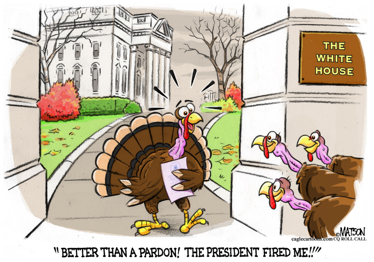 White House Turkey - The Independent | St George Cedar ...