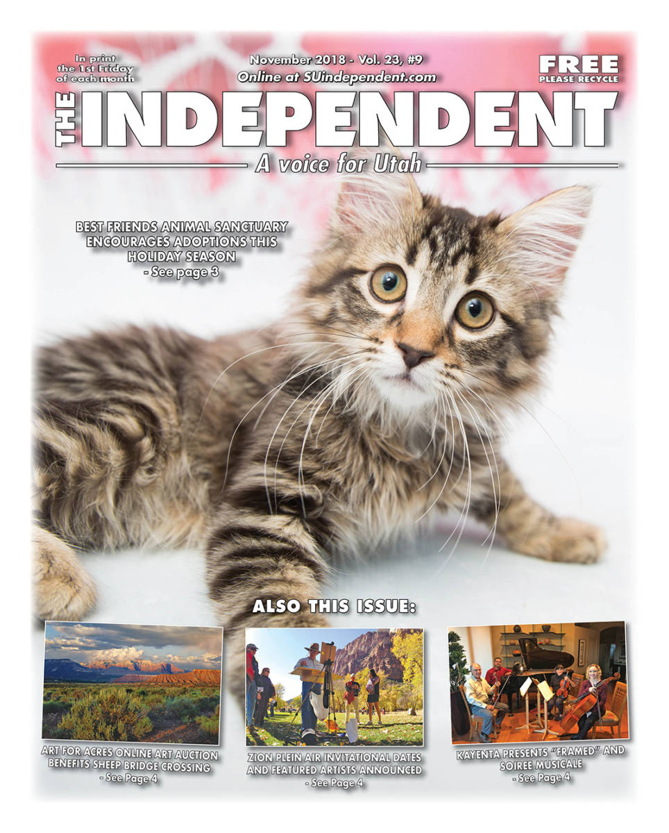 The Independent November 2018 PDF | Best Friends Animal