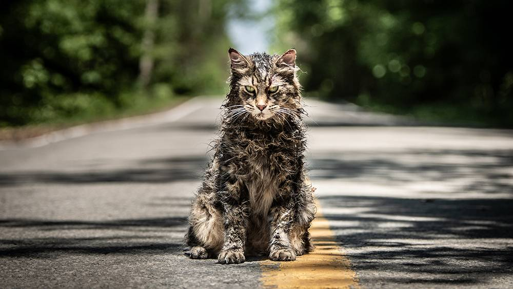 movie review pet sematary benefits from a few welcome alterations particularly in the final. Black Bedroom Furniture Sets. Home Design Ideas