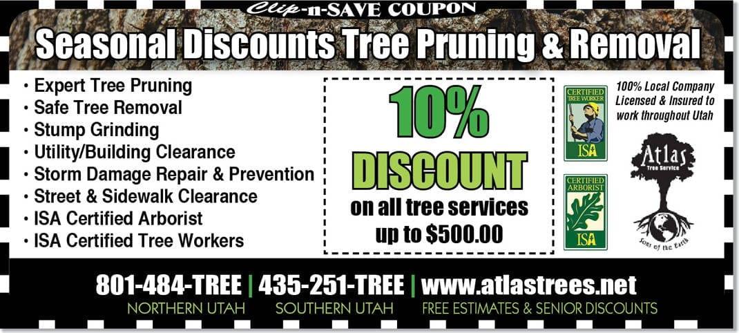 Tree Removal Utah